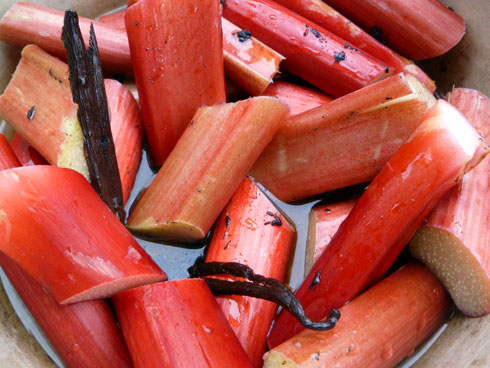 Maple-Roasted Rhubarb Sauce
