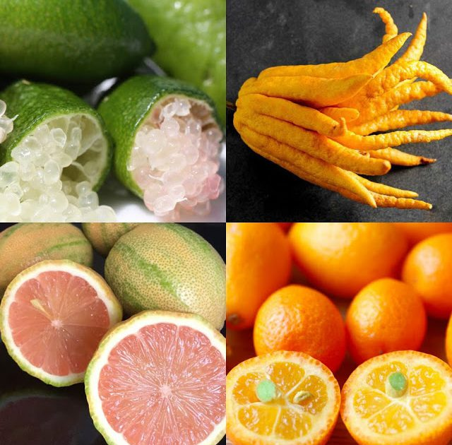 Unique And Specialty Citrus Fruits