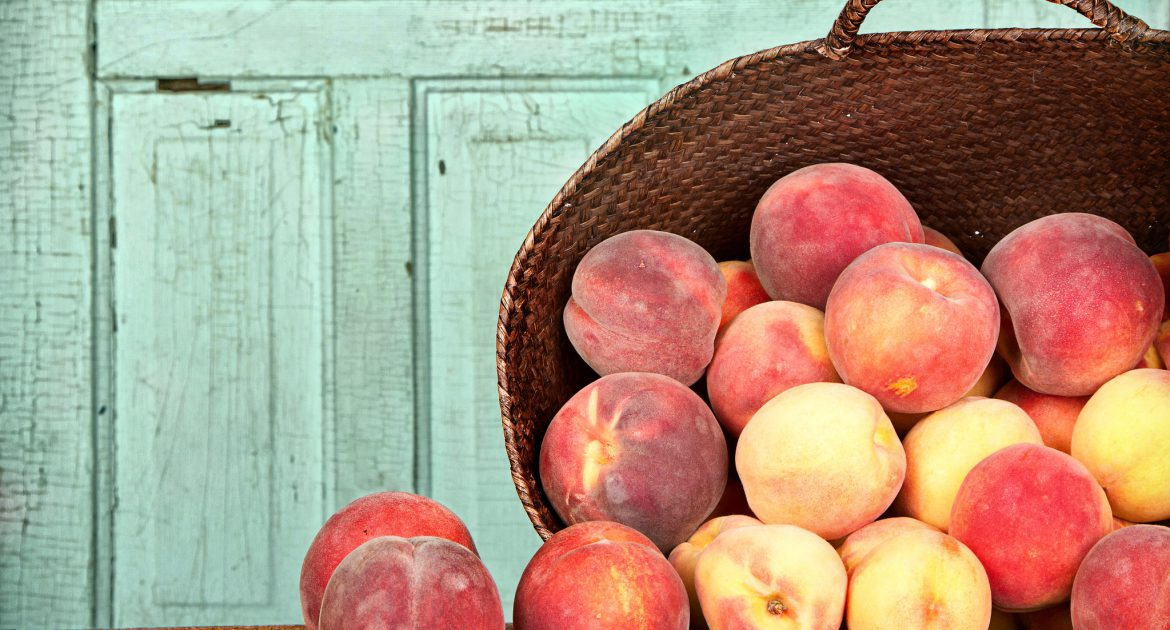 How To Care For Stone Fruit & Recipe Roundup